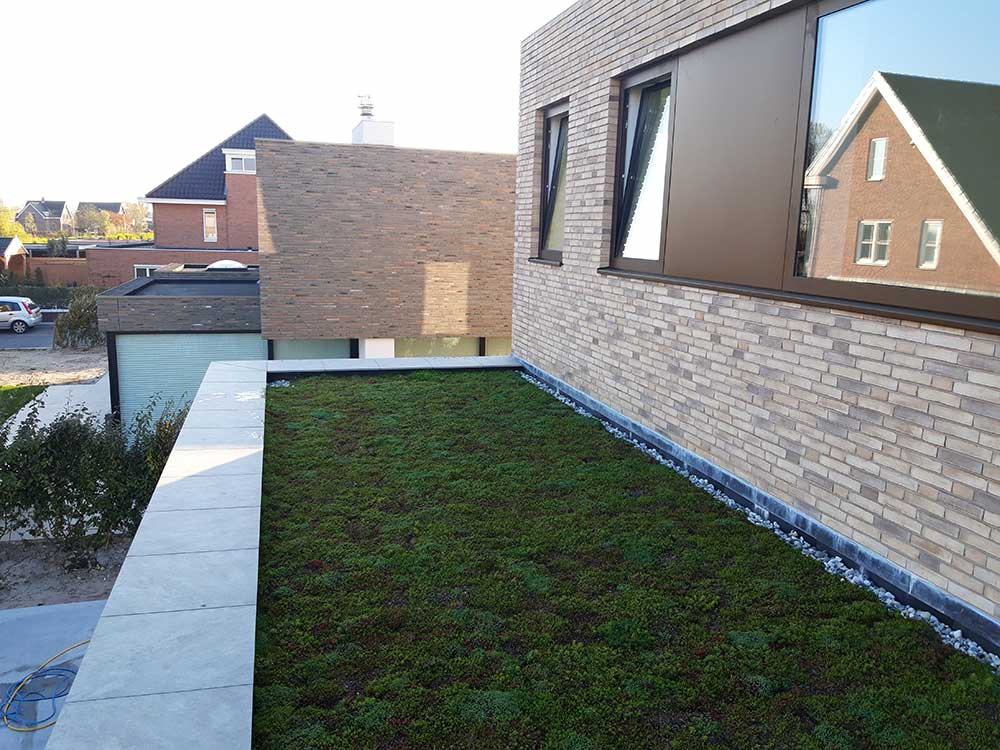 Koeleman Bouw Groene daken