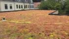 Koeleman Bouw aanbouw volledige renovatie Woelwaterlaan Voorschoten
